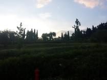 Los jardínes de la villa