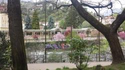Frühling aus Meran (10)