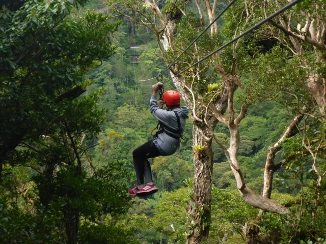 Canopy, Monteverde (27)